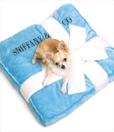 Sniffany & Co Plush Bed #chihuahua