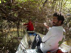 Galhada no meio do igarapé abriga marimbondos e formigas. Foto: Estevão Senra/ISA. Leia o diário de viagem completo e veja outras imagens da Expedição Rio dos Veados > isa.to/1ag7MYF