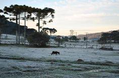 Frio ao amanhecer de Lages, na Serra Catarinense, ao amanhecer desta quinta-feira, 28 de agosto de 2014. A temperatura na cidade chegou a -1ºC, mas a mínima no Estado foi de -6,8ºC, em Urupema:imagem 21