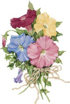 Vintage printable Shabby Flowers, Vintage Flowers, Botanical Flowers, Botanical Prints, Art Floral, Flower Images, Flower Art, Evans Art, Decoupage Printables
