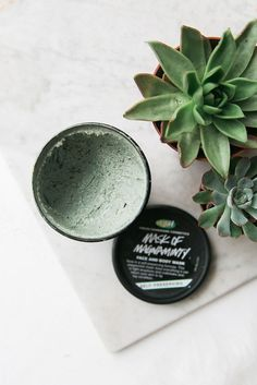 My Five Favourite Lush Products • WishWishWish