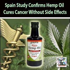 Hemp Oil Cures | Spain Study Confirms Hemp Oil Cures Cancer Without Side Effects | The ...