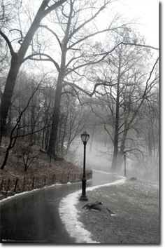 Winter In Central Park Black N White Images, Black And White, Landscape Artwork, Wall Decor, Wall Art, Central Park, Art Pictures, Picture Frames, Country Roads