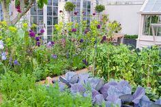 biologische Eetbare natuurtuinen aanleg, advies