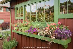 Backyard garden shed with ledge for flowering plants as pollinators for sustainable gardening