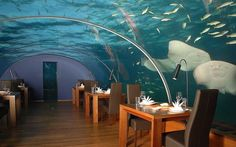 I would love to have a meal here!! Guests are offered the experience of dining 16 feet (4.9m) below sea level with 180-degree...