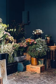 Floral Corner | Flowers and Foliage