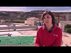 Life Celsius, un proyecto que combina ahorro y compromiso medioambiental
