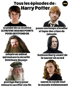 -You can find Hp facts and more on our website. Harry Potter Hermione, Saga Harry Potter, Harry Potter Facts, Harry Potter Characters, Harry Potter World, Hermione Granger, Voldemort, Drago Malfoy, Movies And Series