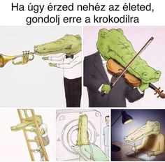 Szegény kroki :( Funny Shit, Funny Pins, Wtf Funny, Funny Jokes, Memes Humor, Bad Memes, Only Getting Better, Me Too Meme, My Hero Academia Manga