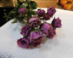 Drying Roses, Preserved Boxwood, Lavender Roses, Spray Roses, Silver Dollar, Trellis, Purple, Pink, Floral