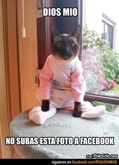 No subas esta foto a Facebook... jajajajaja