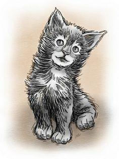 Kitten Graphite Sketch