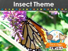 Ideas for teaching about insects in your preschool, pre-k, or kindergarten classroom.