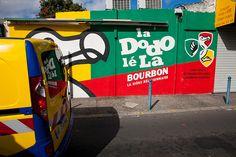 Dodo lé la - Reunion Island - S. Brajeul by Sylvain Brajeul, via Flickr
