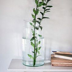 Tesco direct: Broadwell Glass Vase - Large