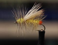 Yellow Sally Stimulator recipe and video- by tightlines productions / Hatches Fly Tying Magazine