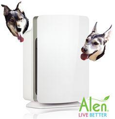 Mingus & Dottie Try It: Alen BreatheSmart Air Purifier