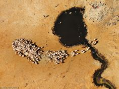 african landscape from above - Google Search