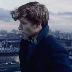 Newt you adorable little nugget Harry Potter Icons, Harry Potter Love, Harry Potter Characters, Harry Potter World, Hogwarts, Eddie Redmayne, Newt Scamander Aesthetic, Lorde, Prisoner Of Azkaban