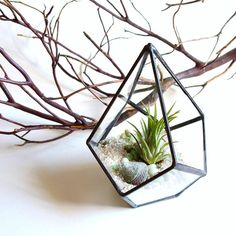 Geometric Terrarium Pod, Air Plant Glass Terrarium, Stained Glass Planter