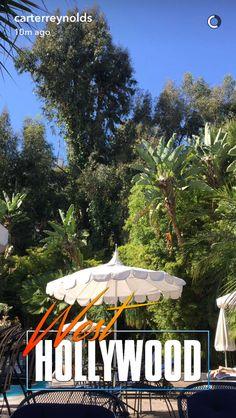 Carter Carter Reynolds, Magcon, Gazebo, Fair Grounds, Hollywood, Outdoor Structures, Travel, Kiosk, Viajes