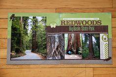 Big Basin Redwoods State Park by jlharbal at @studio_calico