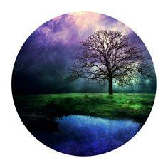 """""""Cambia tus hojas pero nunca pierdas tus raíces. Cambia de opinión pero no pierdas tus principios"""" - Anónimo"""