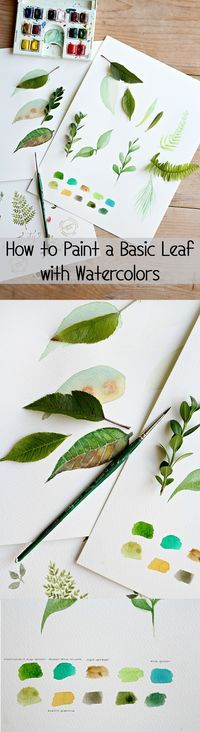 How to Paint a Basic Leaf with Watercolors   eHow