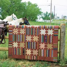 Saddle Tramp by Marcie Patch free Pattern from McCalls's Quilting