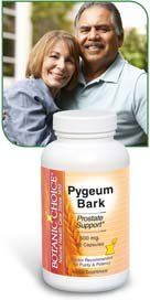Pygeum 13% Powdered Extract 1.1 lb (500 g)  Popular men s health High quality 500 mg nutrient Prostate support Men, if you're over 50 it's vital to take care of your prostate. From the bark of an African evergreen tree, Pygeum has been the traditional favorite for men's health for centuries. Today herbalists prize it for its ability to promote urinary and prostate health. Put this time-tested protector to work for you, starting today. Easy-to-swallow capsules.