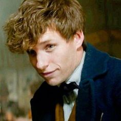 """""Regarded as the world authority on magical creatures, Newt Scamander is the author of Fantastic Beasts and Where to Find Them, which has been an approved textbook at Hogwarts since its publication. Harry Potter Toms, Harry Potter Characters, Bob Ross, Young Newt, Harry Potter Lufa Lufa, Newt Scamander Aesthetic, Hogwarts, Newton Scamander, Harry Potter Aesthetic"