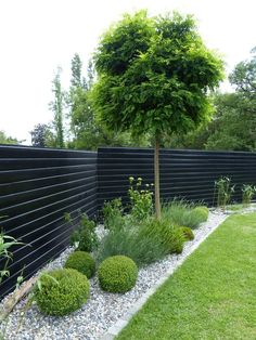 51 simple and small front yard landscaping ideas for low maintenance 4 ⋆ frequ., - 51 simple and small front yard landscaping ideas for low maintenance 4 ⋆ frequ…, Small Front Yard Landscaping, Fence Landscaping, Backyard Fences, Diy Fence, Fence Ideas, Backyard Privacy, Modern Landscaping, Patio Ideas, Arborvitae Landscaping