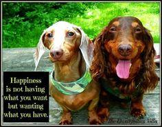 Yes it is, Sweeties! :)