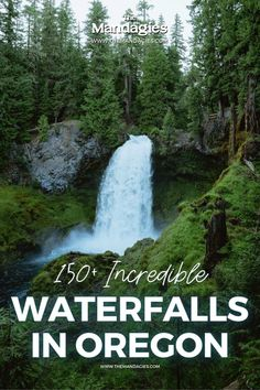 There are so many waterfalls in Oregon to explore, there's one to see no matter where you travel in the state! We're sharing the most famous Oregon waterfalls here, with tips, maps, and downloadable bucket lists to print too! #oregon #PNW #oregonstate #PacificNorthwest #portland #waterfalls Famous Waterfalls, Oregon Waterfalls, Beautiful Waterfalls, Forest Waterfall, Waterfall Hikes, Oregon Road Trip, Oregon Travel, Ramona Falls, Multnomah Falls