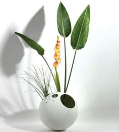 vase - Google Search