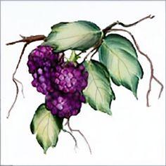 Kitchen Tiles Fruit Design vegetables tile designs | fruits and vegetables designs on tiles