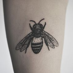 Wolf & Wren Tattoo Collective Little bee by @planeharry - Thank you @sixxtine