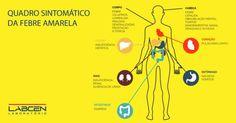 #News  Minas já tem 110 casos suspeitos de febre amarela e realiza vacinação domiciliar Map, Kidney Failure, Yellow Fever, Health Tips, Cases, Maps, Peta
