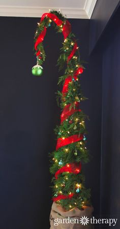 This a how to on growing a tree shaped like a whoville like tree but I think a wire frame and garland could be used for similar results. So cute!