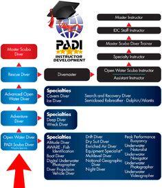PADI Scuba Diving Courses _Eco Dive Center, Culver City