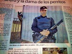 Son Banya: un caballo mira a un policía. «Ola, ¿k ase?»