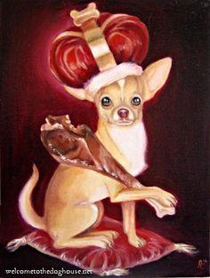king of the chihuahuas | King of the Chihuahuas! | Flickr - Photo Sharing!