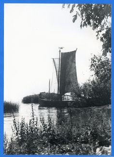 Nidden, Kurenkahn am Ufer