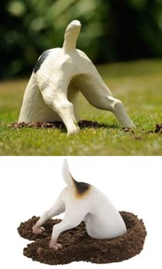 hahaha people might wonder if this was really my dog with his booty in the air if I put this in my lawn!
