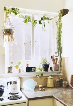 Lauren Bamford portfolio - Littl Nicki interior