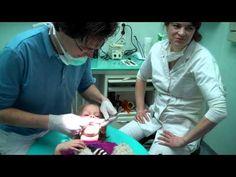Flip de beer bij de tandarts