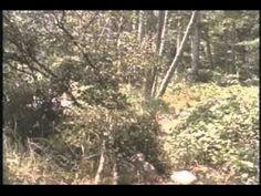 EL MISIONERO(PELICULA CRISTIANA)COMPLETA - YouTube
