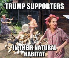 This is so funny. I know it is mean but life sometimes is. Those that are the poorest in the country, with the lowest IQ and education, also vote for trump. Right dan?