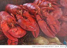Lobster Bakes – 1812 Farm